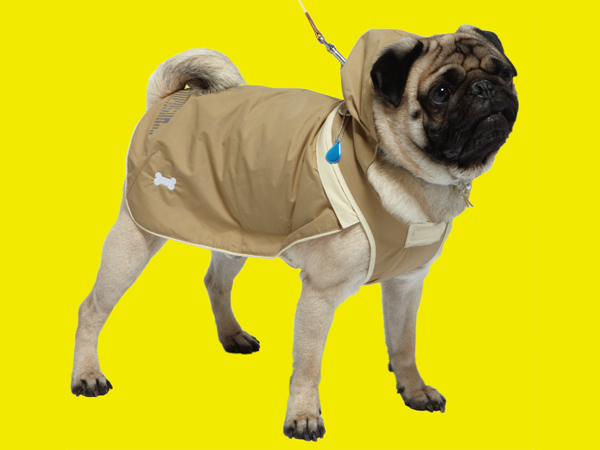 Sports coat for dogs 03