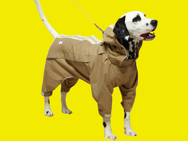 Sports coat for dogs 06